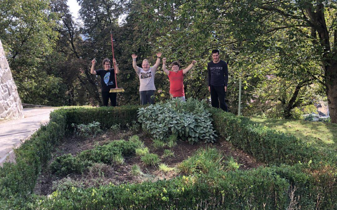 Urejanje grajskega vrta