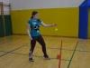 Področno prvenstvo v badmintonu